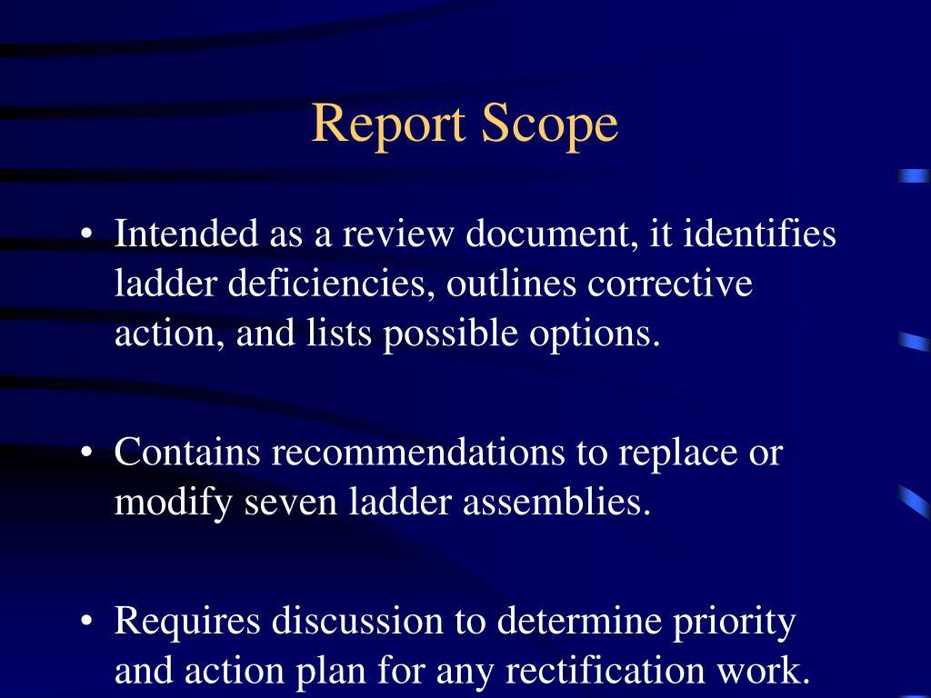 Report Scope