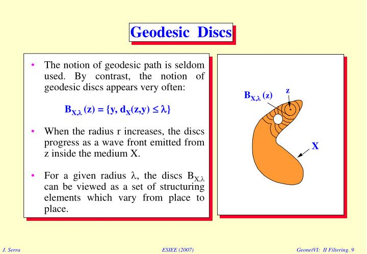 The notion of geodesic path is seldom used. By contrast, the notion of geodesic discs appears very often: