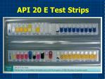 api 20 e test strips