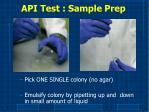 api test sample prep