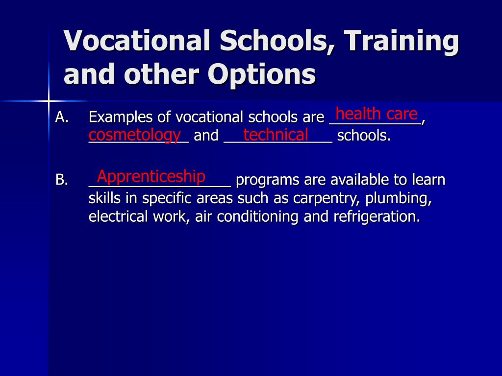 Vocational Schools, Training and other Options