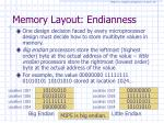 memory layout endianness