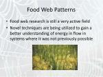 food web patterns39