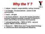 why the y