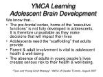 ymca learning adolescent brain development