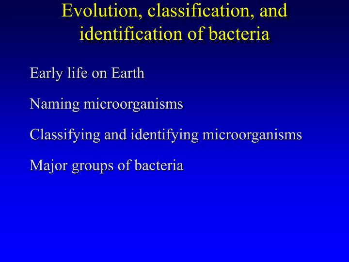 evolution classification and identification of bacteria n.