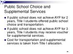 public school choice and supplemental services