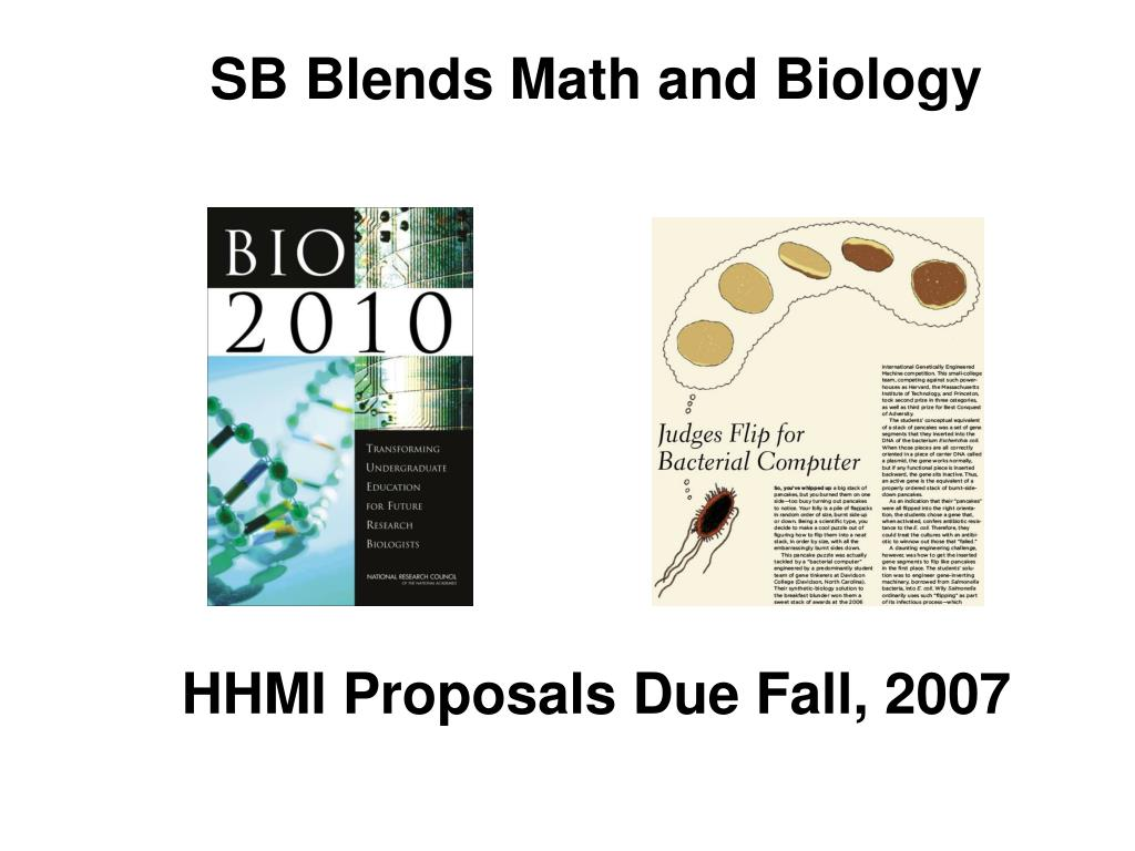 SB Blends Math and Biology