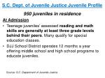 s c dept of juvenile justice juvenile profile