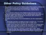 other policy guidelines