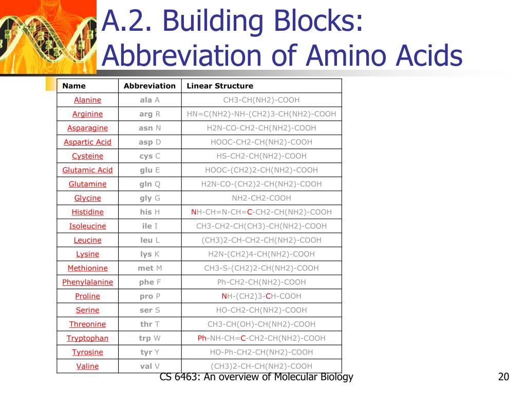 A.2. Building Blocks: Abbreviation of Amino Acids