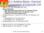 a 2 building blocks chemical composition of eukaryotic cell