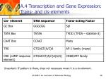 a 4 transcription and gene expression trans and cis elements