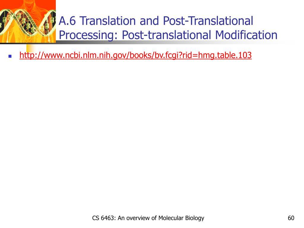 A.6 Translation and Post-Translational Processing: Post-translational Modification