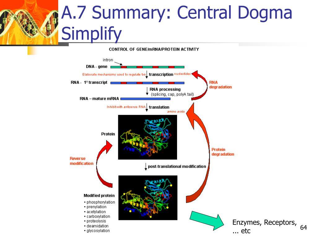 A.7 Summary: Central Dogma Simplify
