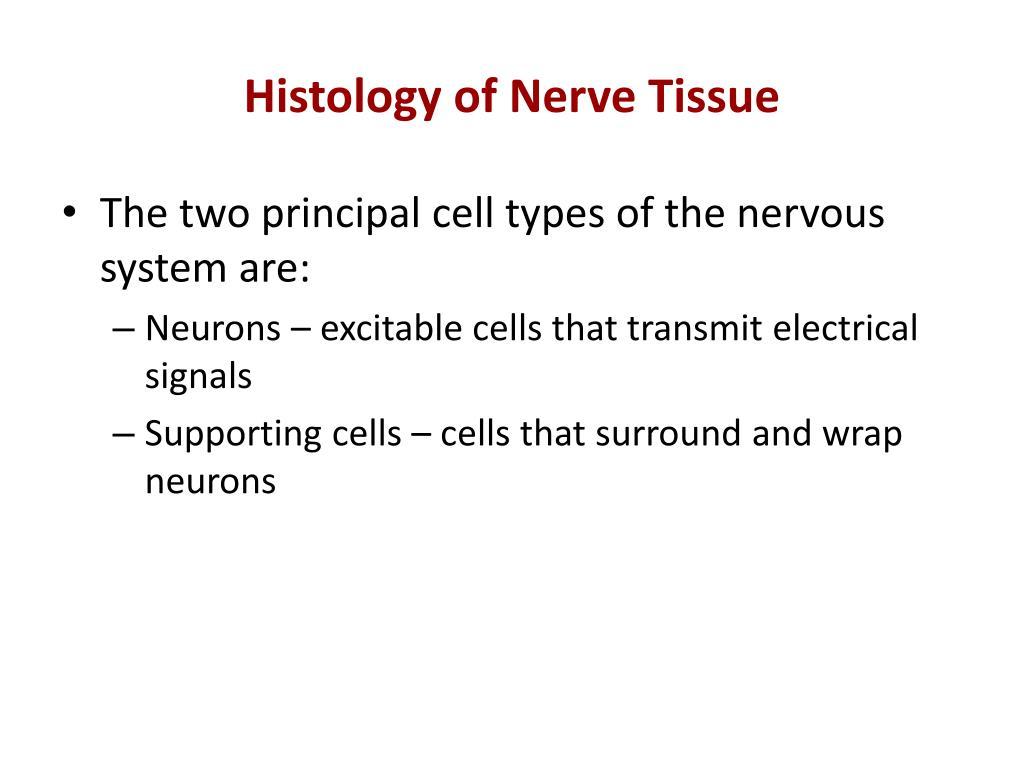 Histology of Nerve Tissue