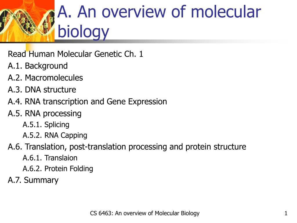 a an overview of molecular biology l.
