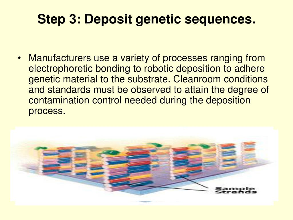 Step 3: Deposit genetic sequences.