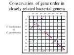 conservation of gene order in closely related bacterial genera