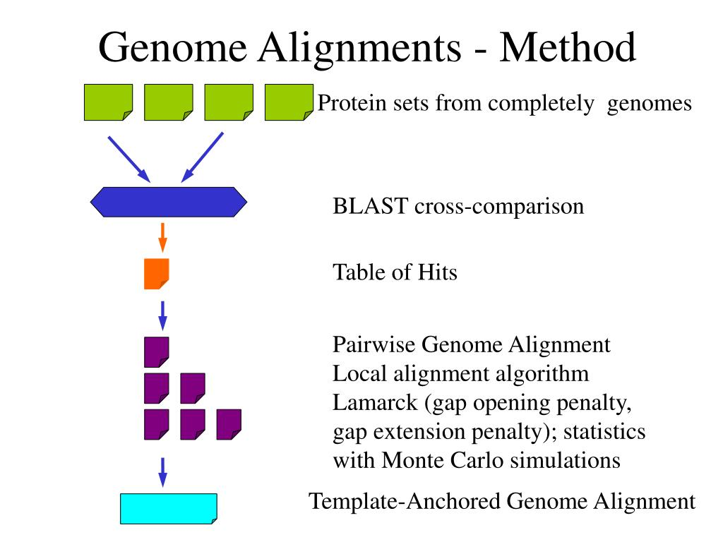 Genome Alignments - Method