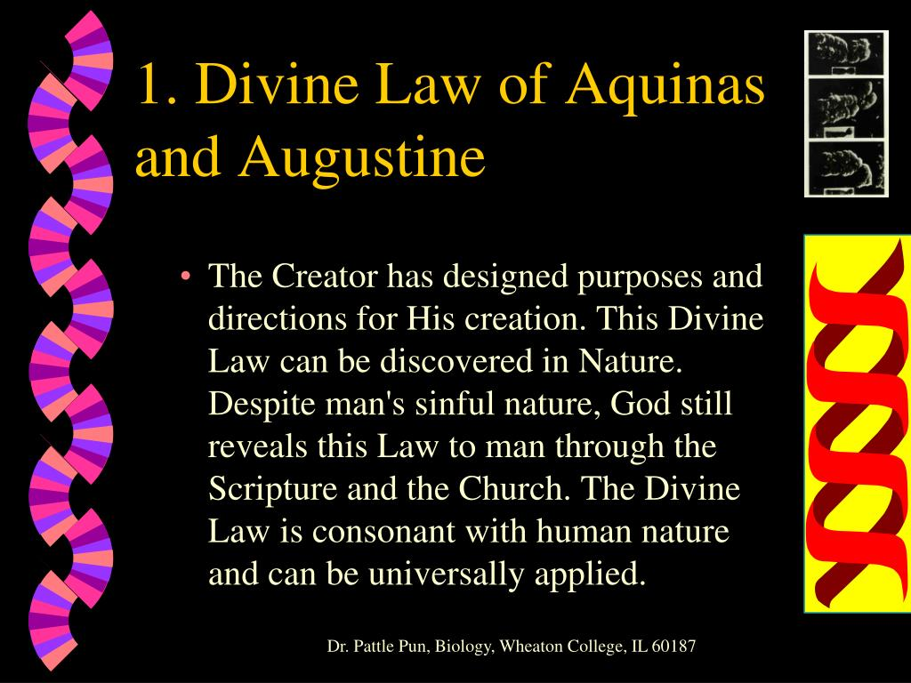 1. Divine Law of Aquinas and Augustine