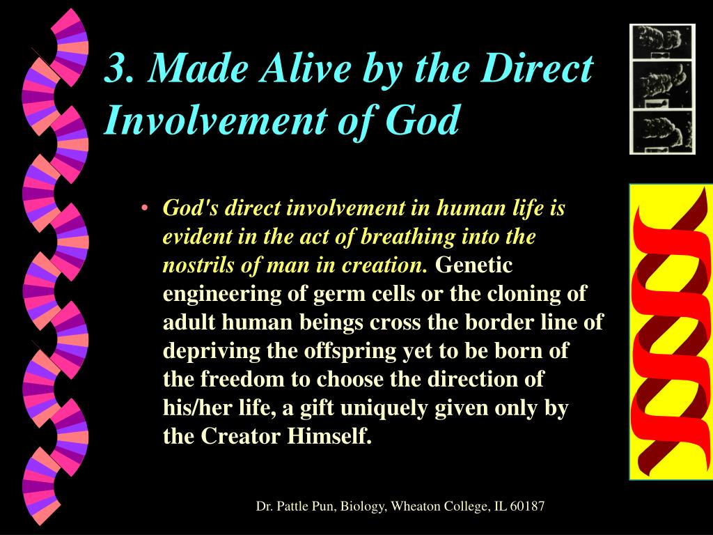 3. Made Alive by the Direct Involvement of God