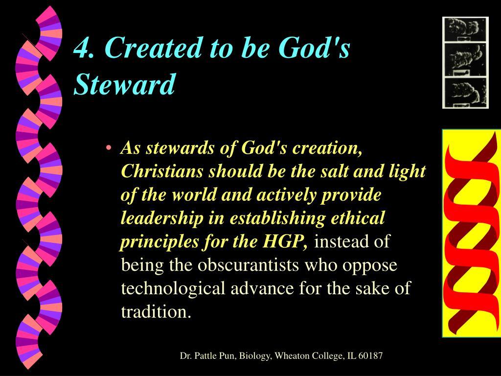 4. Created to be God's Steward