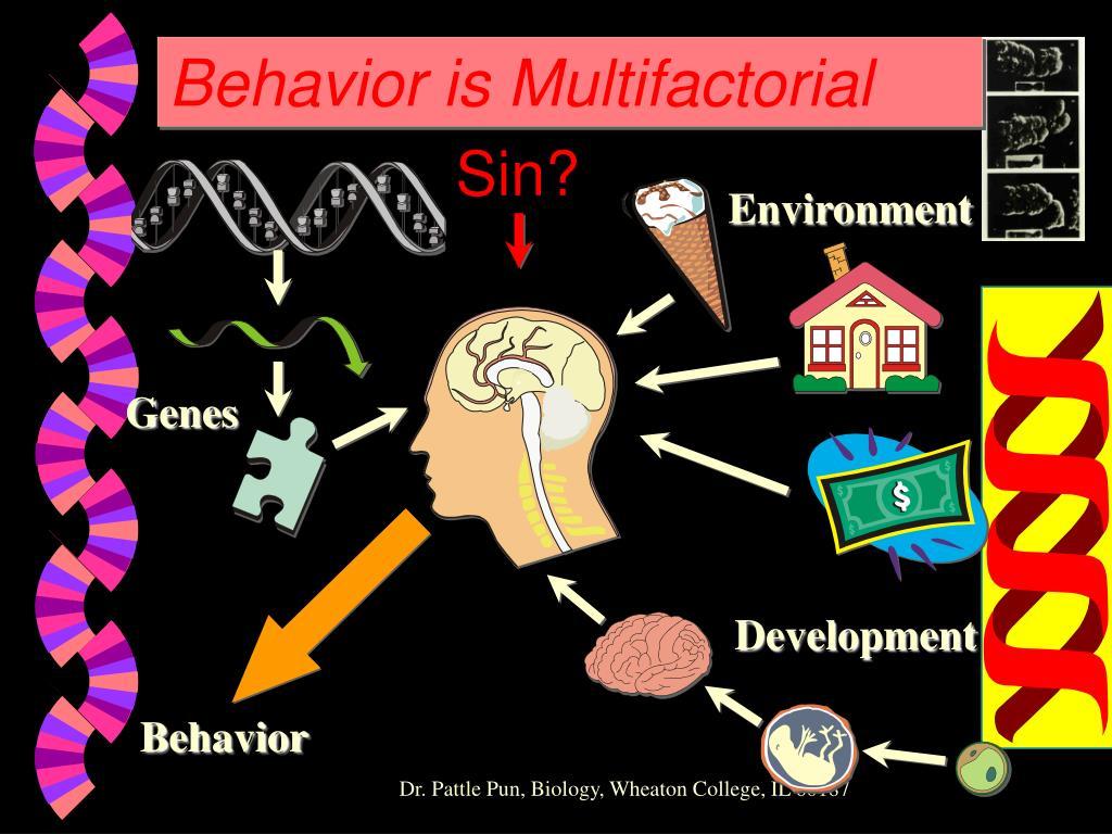 Behavior is Multifactorial