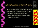 identification of the cf gene