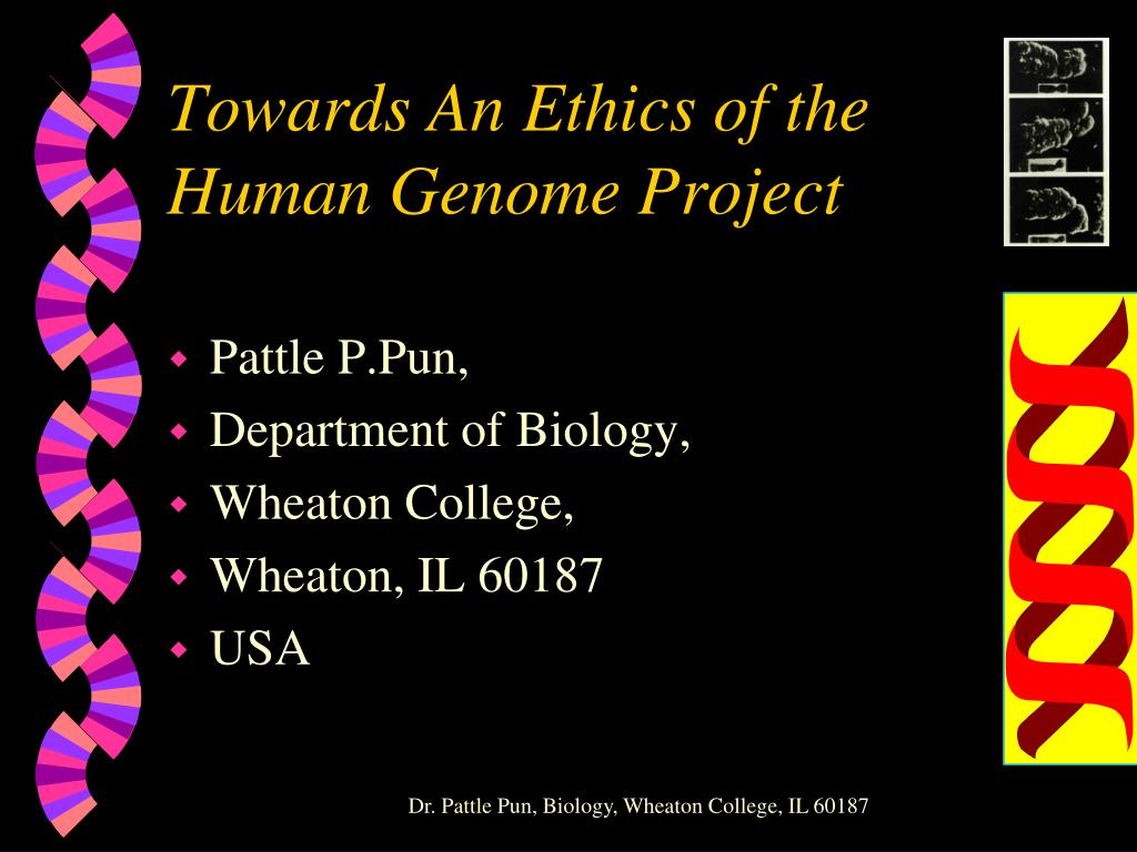 towards an ethics of the human genome project l.