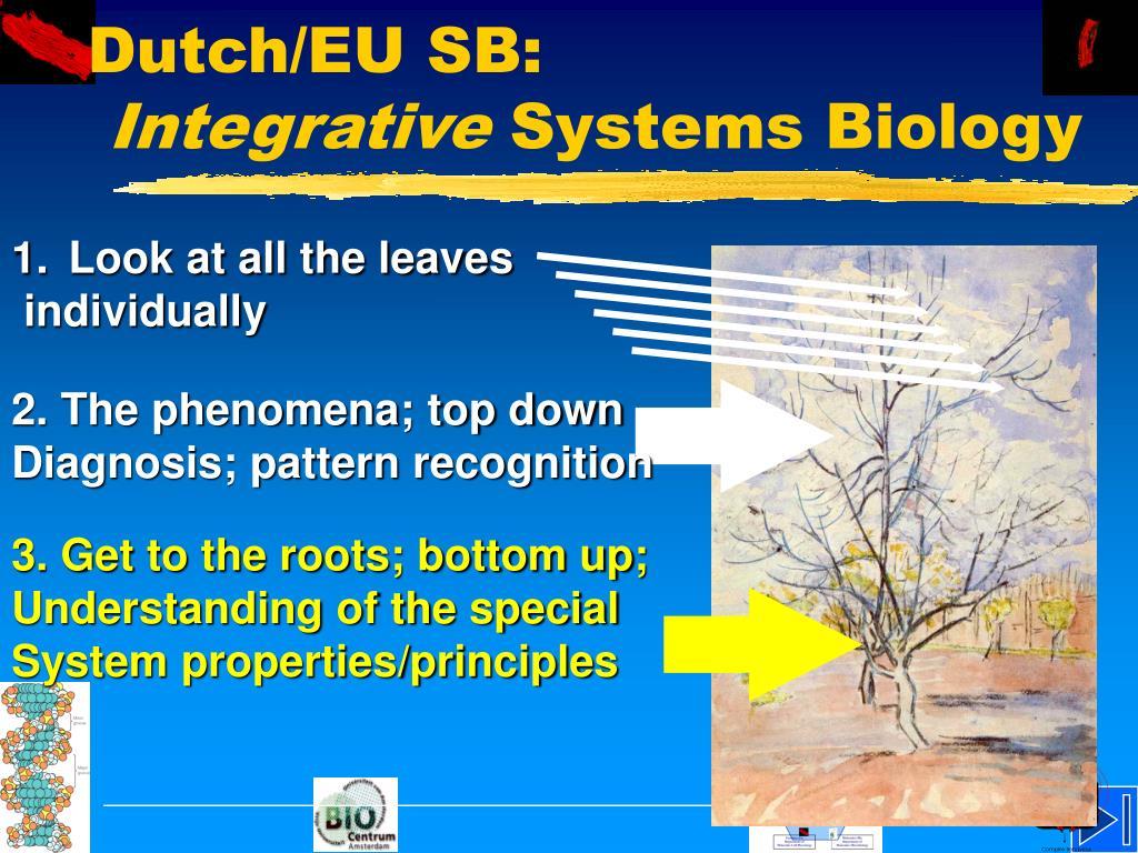 Dutch/EU SB: