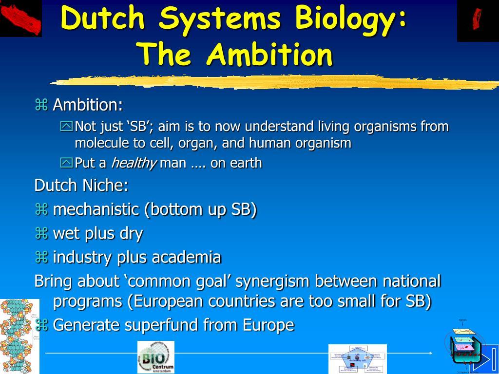 Dutch Systems Biology: