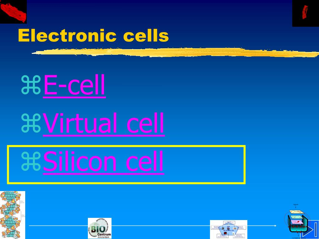 Electronic cells