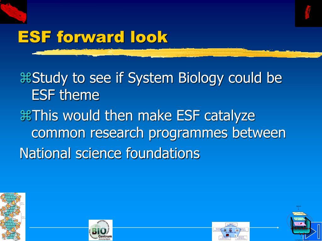 ESF forward look