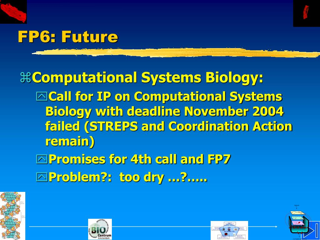 FP6: Future