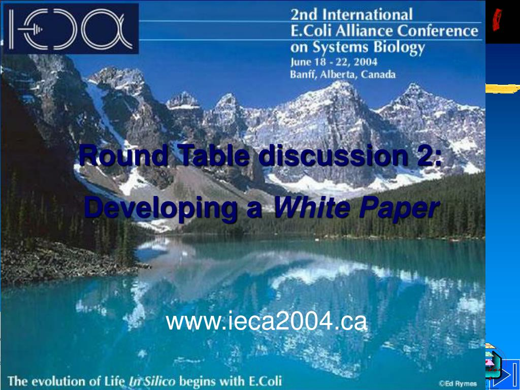 Round Table discussion 2: