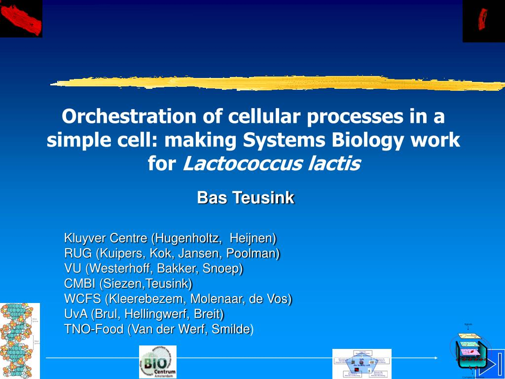 Orchestration of cellular processes in a simple cell: making Systems Biology work for
