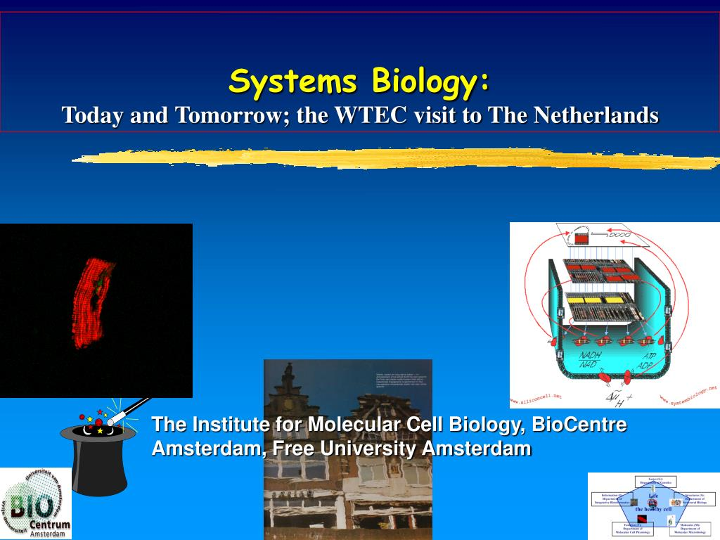 systems biology today and tomorrow the wtec visit to the netherlands l.
