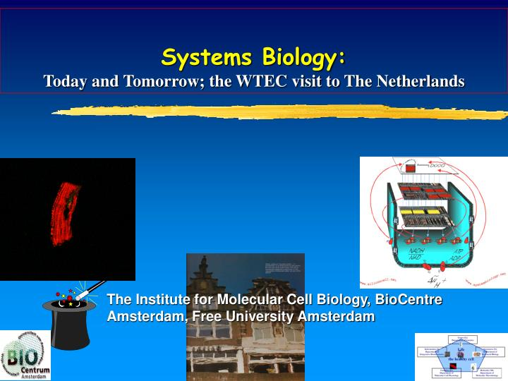 Systems biology today and tomorrow the wtec visit to the netherlands