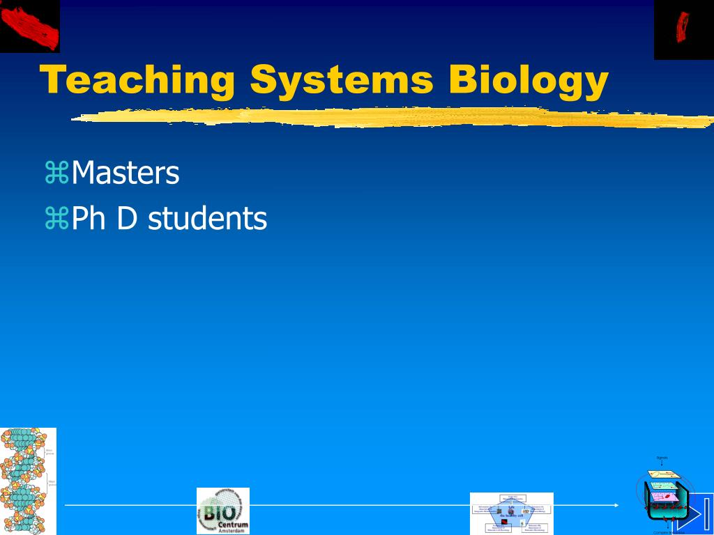 Teaching Systems Biology