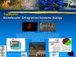 topmaster biomolecular integration systems biology