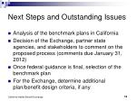 next steps and outstanding issues
