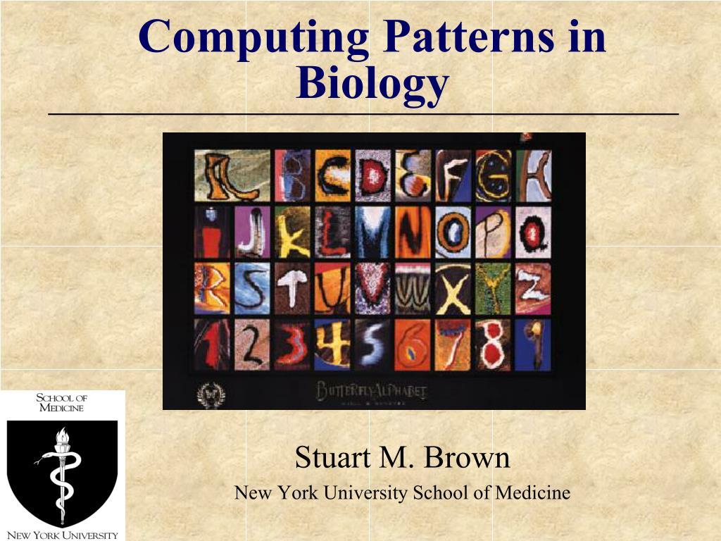 computing patterns in biology l.