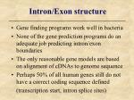intron exon structure