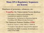 many dna regulatory sequences are known