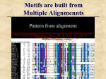 motifs are built from multiple alignmennts