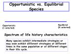 opportunistic vs equilibrial species31