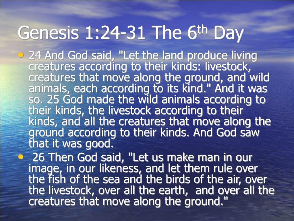 Genesis 1:24-31 The 6