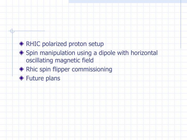 RHIC polarized proton setup