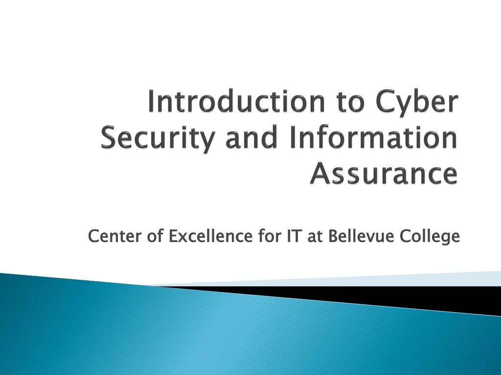 introduction to cyber security and information assurance l.